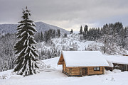 Evgeni Dinev - Winter Cabin