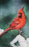 Cardinals In Snow Prints - Winter Cardinal  Print by Melinda Saminski