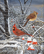 Marshall Bannister - Winter Cardinals