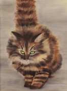 Animal Pastels Metal Prints - Winter Cat Metal Print by Anastasiya Malakhova