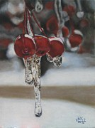 Alan Berkman - Winter Cherries