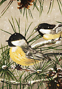 Bird On Tree Prints - Winter Chickadees Print by Chastity Hoff