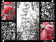 Quince Digital Art Prints - Winter Collage Print by David Smith