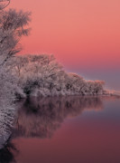 Most Popular Photo Posters - Winter Color Poster by Leland Howard