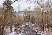 Winter Prints Posters - Winter Creek Red Rock Scenic Landscape View Poster by James Bo Insogna