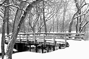 David Yunker Framed Prints - Winter Crossing Framed Print by David Yunker