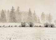 Fog Mist Paintings - Winter by Dirk Dzimirsky