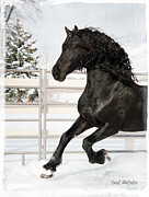 Friesian Posters - Winter Dream Poster by Royal Grove Fine Art