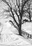 Daviess County Photo Prints - Winter Driveway Print by Wendell Thompson