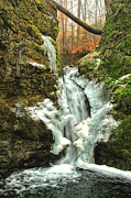 Shelton Framed Prints - Winter Falls Framed Print by Karol  Livote