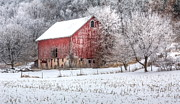 Kelly Marquardt - Winter Farm