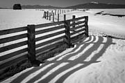 Vastness Prints - Winter Fence Print by Inge Johnsson