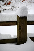 Mary Beth Landis - Winter Fence Post