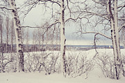 Winter Scenery Prints - Winter Fields Print by Jenny Rainbow