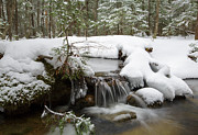 Snowy Brook Art - Winter Forest - Lincoln New Hampshire USA by Erin Paul Donovan