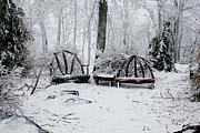 Tom Carriker - Winter Forest Seating