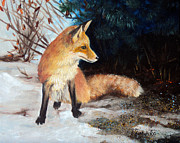 Laura Tasheiko - Winter Fox