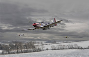 P51 Mustang Digital Art Posters - Winter Freedom Poster by Pat Speirs