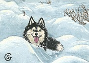 Snow Drifts Painting Posters - Winter Games -- Husky Style Poster by Sherry Goeben