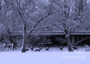 Winter Trees Art - Winter Geese Retreat by Carol Groenen