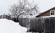 Winter Scene Photo Prints - Winter Geometry 2. Russia Print by Jenny Rainbow
