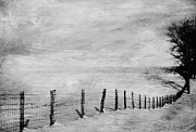 Fence Row Photos - Winter Haze by Kathy Jennings