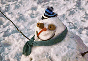 Snowman Photos - Winter - Im ready for my closeup by Mike Savad