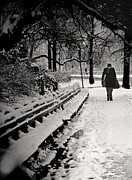 Benches Prints - Winter In Central Park Print by Madeline Ellis