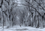Nina Bradica Metal Prints - Winter in Central Park Metal Print by Nina Bradica