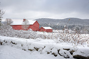 Red Barns Photo Prints - Winter in Connecticut Print by Bill  Wakeley