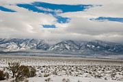 Robert Ford - Winter in Great Basin...