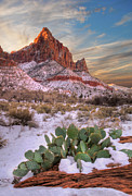 Winter In Zion National Park Utah Print by Utah Images