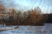 Winter Trees Digital Art Metal Prints - Winter Lagoon w metal Metal Print by Anita Burgermeister