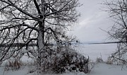 Gail Matthews - WINTER Lake VIEW FROM ASHORE