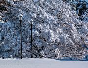 Nick Zelinsky - Winter Lamp Post