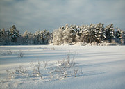 Winter Landscape At Mud Lake Ottawa Print by Rob Huntley