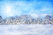 Snowstorm Art - Winter Landscape by Darren Fisher
