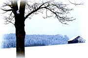 The Creative Minds Photos - Winter Landscape in Bavaria by The Creative Minds Art and Photography
