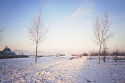 HJBH Photography - Winter Light