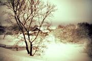 Jenny Rainbow - Winter Loneliness