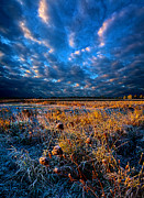 Phil Koch - Winter Lurks