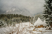 Christmas Holiday Scenery Art - Winter mood by Cristina-Velina Ion