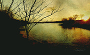 Altered Photograph Photos - Winter Moody Sunset  by Ann Powell