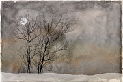 Ron Jones Framed Prints - Winter Moon Framed Print by Ron Jones