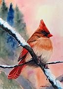 Redbird Prints - Winter Morn Print by John W Walker