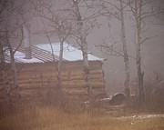 Log Cabins Prints - Winter Morn Print by Roland Stanke