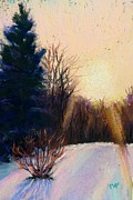 Morning Pastels - Winter Morning Light by Takeyce Walter