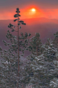 Kings Canyon National Park Posters - Winter Mountain Sunset Poster by Stephen  Vecchiotti