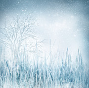 Copyspace Digital Art Posters - Winter Poster by Mythja  Photography