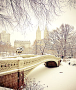 Vivienne Gucwa - Winter - New York City -...